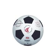 [TAITRA] Standard Soccer Ball No. 5
