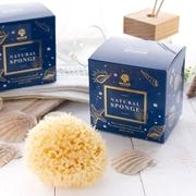 (NOViCE)[NOViCE - European natural sponges