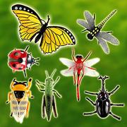 7 เข้าสู่โมเดลแมลงจำลอง (เวอร์ชั่นขยาย) (สีเพื่อความปลอดภัย) (ST506)
