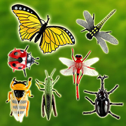 [TAITRA] 7 Pieces Insect Toy Figure (large)(safe paint)(ST506)