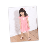 [MY + DNA Bear Head] splicing tulle dress - pink (D2162-11)