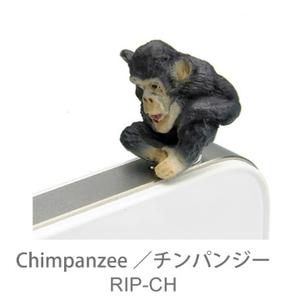 (JAPAN【RELAX】)Japan [RELAX] iplug animal modeling earphone dust plug - chimpanzee