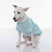(Fabrizio)[Fabrizio] method Beach Heart shape short sleeve stripe pet clothes