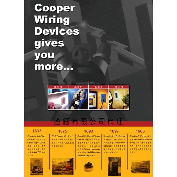 (COOPER)US COOPER double power switch + socket panel 94432 - brass