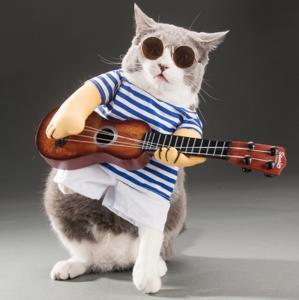 ชุดแฟนซี น้องหมา น้องแมว ชุดนักดนตรีเล่นกีต้าร์ > ชุดแฟนซี น้องหมา น้องแมว ชุดนักดนตรีเล่นกีต้าร์ Size XS