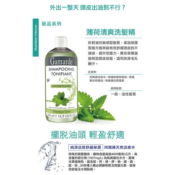 (GamARde)Mint Refreshing Shampoo 500ml