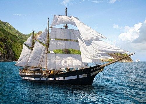 Sunny Voyage Voyage-0500 Movies