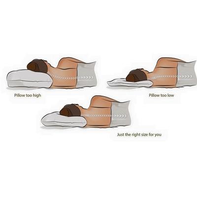 หมอนยางพาราธรรมชาติ 100%  รุ่นคอนทัวร์ Contour Latex Pillow เพื่อสุขภาพ