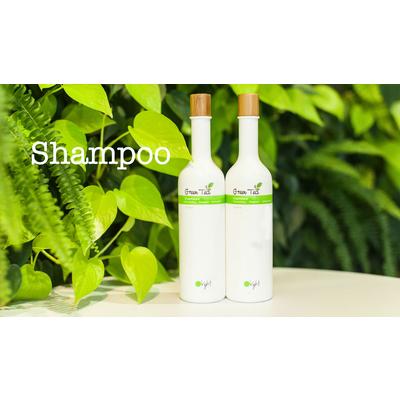 GREEN TEA SHAMPOO 400 มล., สำหรับผมธรรมดา, โฟมแทนออร์แกนิคที่ผ่านการรับรอง, สารสกัดจากชาเขียวออร์แกนิคที่ผ่านการรับรอง