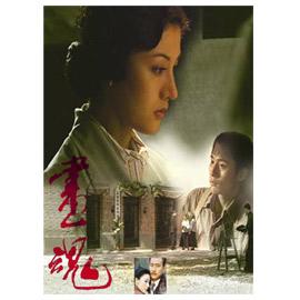 畫魂(全30集)DVD