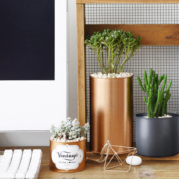 (Meric Garden)[Meric Garden] creative Nordic ins wind cans / potted storage tanks _ covered (rose gold) large
