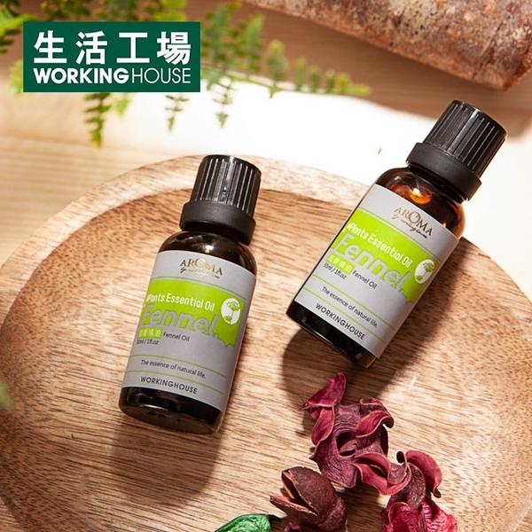 Plants Fennel Essential Oil 30ml-Life Workshop