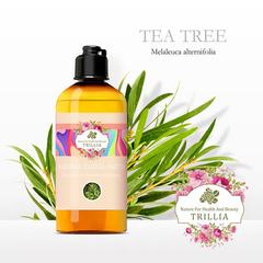 【 Trillia 】 Australian Tea Tree Pure Lotion-300ml