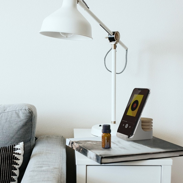 [Bone Collection] Charm Diffuser Phone Stand - Owl Wes