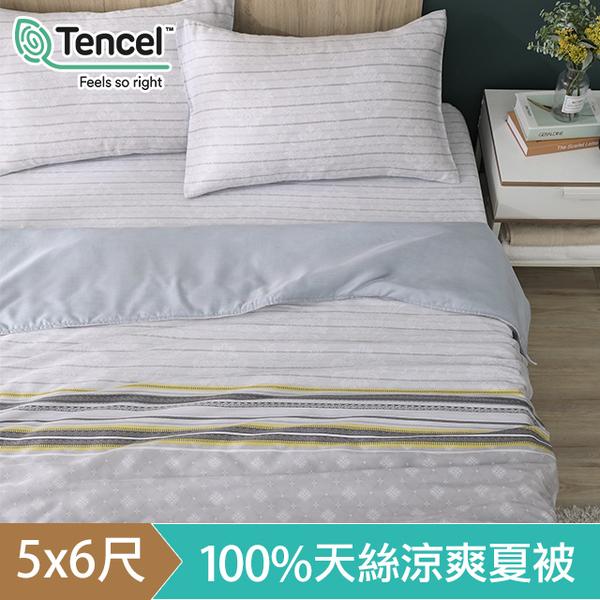 (hoyacasa)HOYACASA Camille Tencel Cool and Gentle Summer Quilt (5x6 feet)